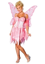 Sugar Plum Fairy Woman Costume