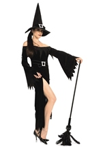 Wicked Witch Woman Costume