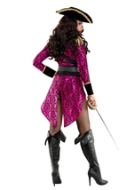 Adult Swashbuckler Woman Costume