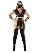 Adult Ninja Assassin Woman Plus Costume